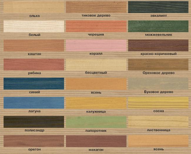 Разнообразие оттенков краски